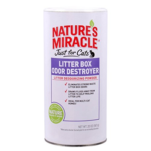Odorbiotics Cat Amp Kitten Odor Remover Amp Stain Cleaner